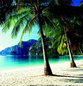 Tonsai-Beach-Phi-Phi-Islands-Thailand-Print-C12041930