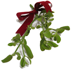 mistletoe_sample