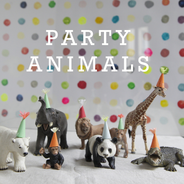 Animals Ready To Party
