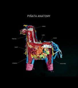Anatomy of a Pinata