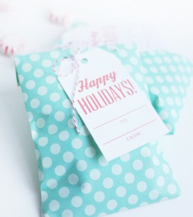 5_holiday_bag