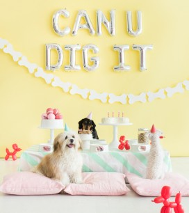 Puppy Party | Oh Happy Day!