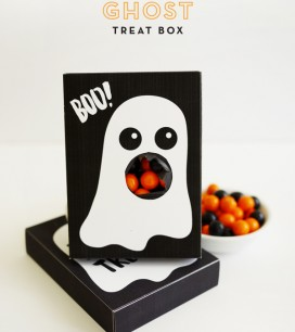 1_ghost_treatbox
