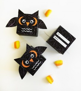 1_owl_treatbox