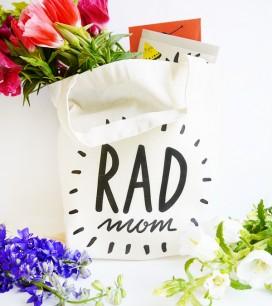 3_radmom_bag
