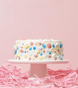Piece of Cake | Robin's Egg Terazzo Cake