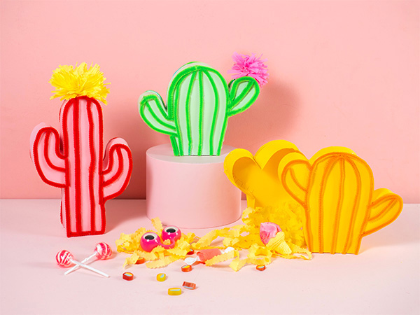 Cactus Giftbox | Oh Happy Day