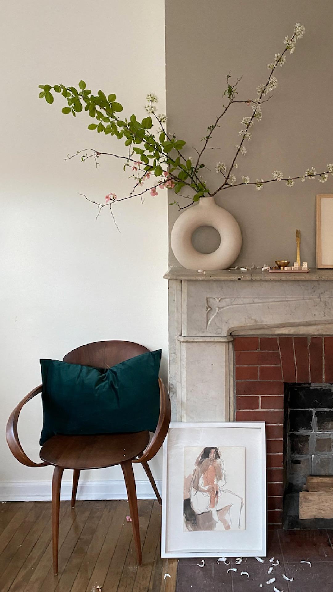 Designey Home Basics